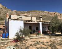 Resale - Country Property/Finca - La Romana - La Romana Alicante