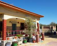 Resale - Country Property/Finca - San Vicente del Raspeig - San Vicente del RaspeigAlicanteValenciaSpain