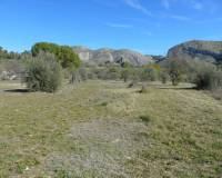 Resale - Detached Villa - Millena