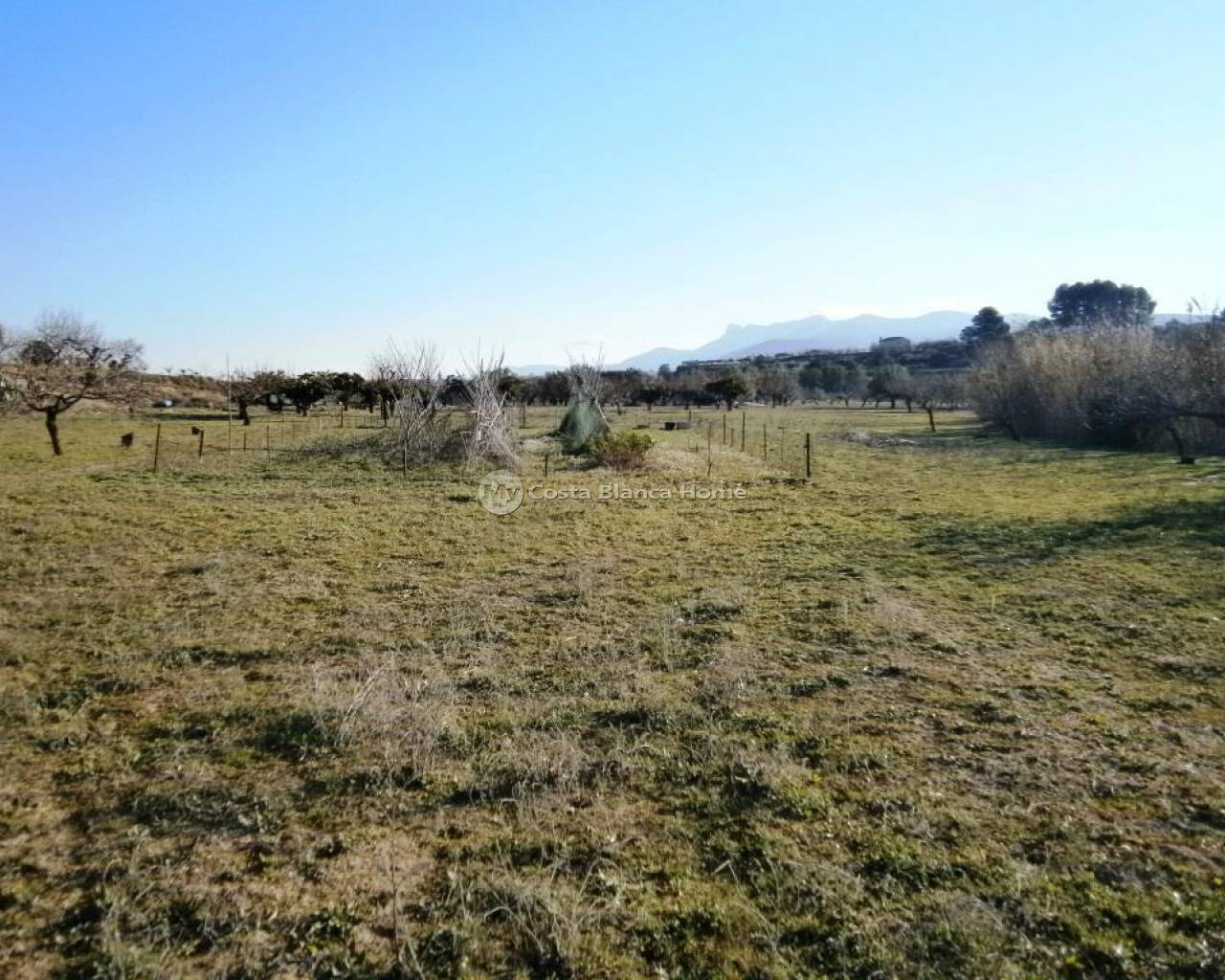 Resale - Plots and Land - Agullent